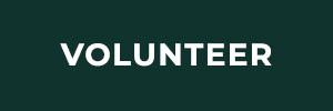 volunteer_button